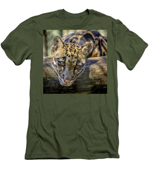 Men's T-Shirt (Athletic Fit) featuring the photograph Clouded Leopard by Steven Sparks