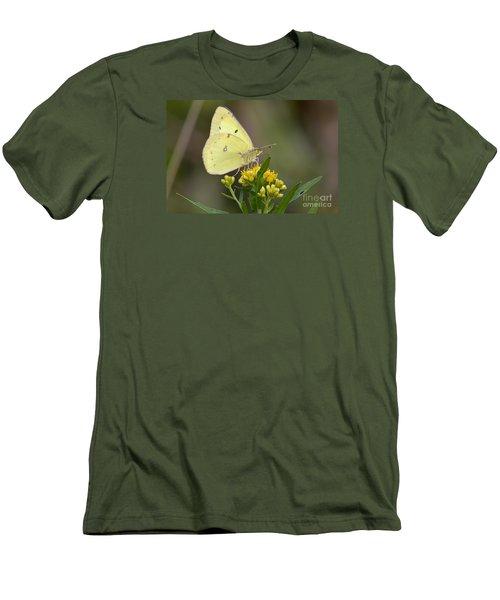 Clouded Sulphur Men's T-Shirt (Slim Fit) by Randy Bodkins