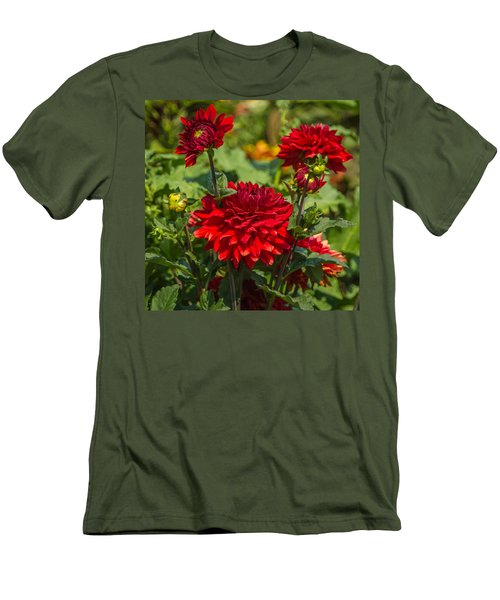 Cluster Of Dahlias Men's T-Shirt (Athletic Fit)