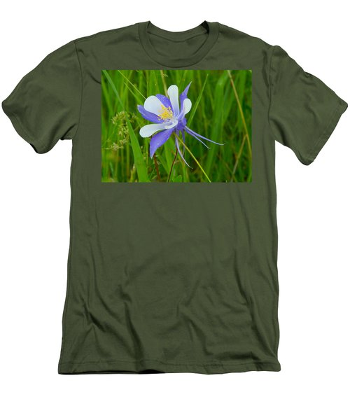 Colorado Columbine Men's T-Shirt (Slim Fit) by Dan Miller