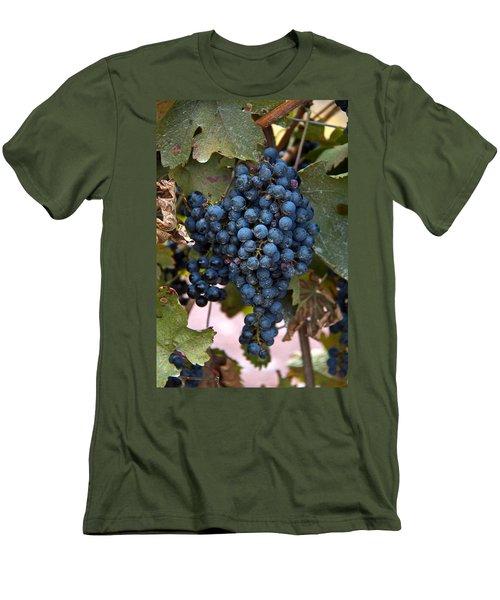 Concord Grapes Men's T-Shirt (Slim Fit) by Leeon Pezok