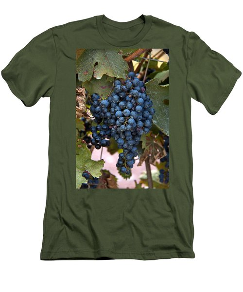 Concord Grapes Men's T-Shirt (Athletic Fit)