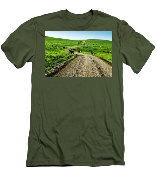 Cows On The Road Men's T-Shirt (Athletic Fit)