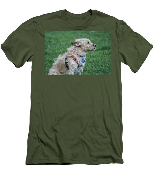Men's T-Shirt (Slim Fit) featuring the photograph Cruz Enjoying A Warm Gentle Breeze by Thomas Woolworth