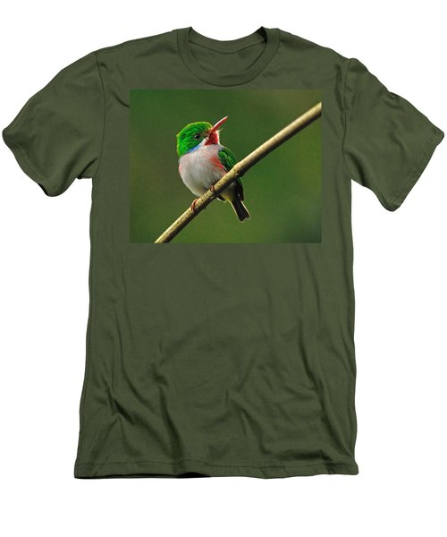 Cuban Tody Men's T-Shirt (Athletic Fit)