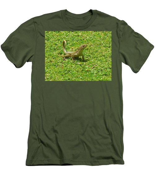 Curly-tailed Lizard Men's T-Shirt (Slim Fit) by Ron Davidson