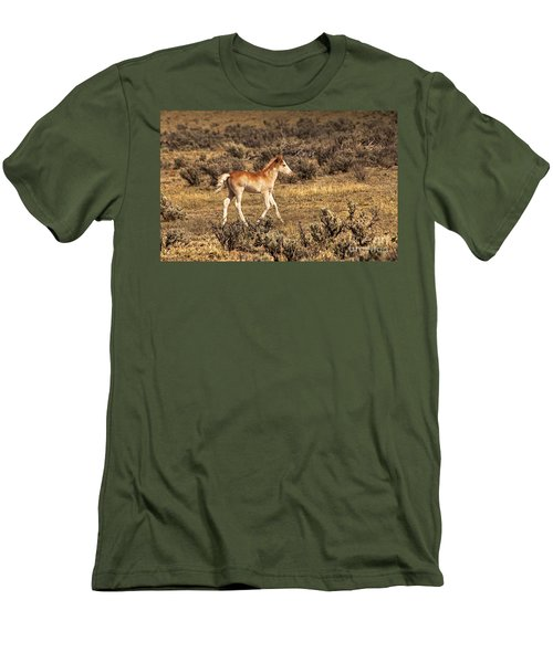 Cute Colt Wild Horse On Navajo Indian Reservation  Men's T-Shirt (Athletic Fit)