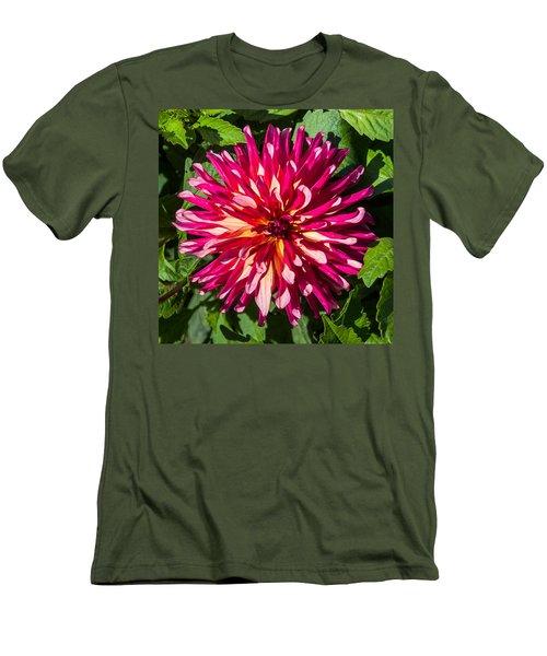 Dahlia 2 Men's T-Shirt (Athletic Fit)