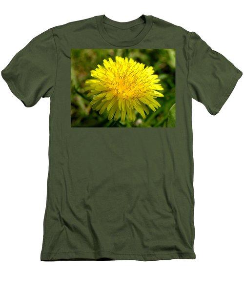 Dandelion Men's T-Shirt (Slim Fit) by Ron Harpham