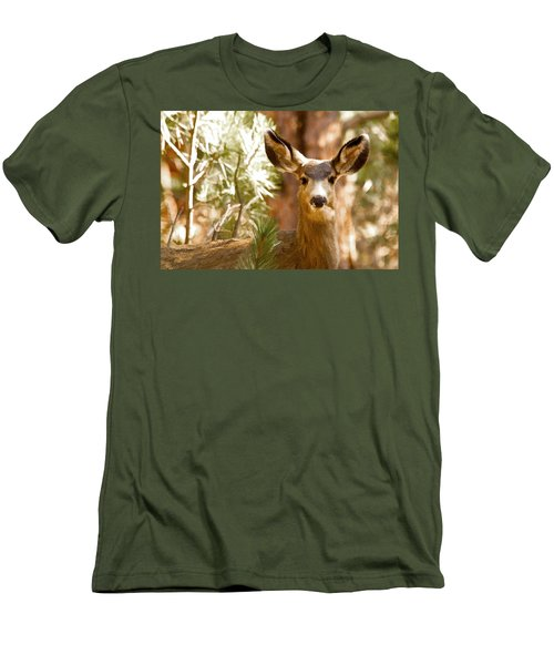 Doe Awareness Men's T-Shirt (Athletic Fit)