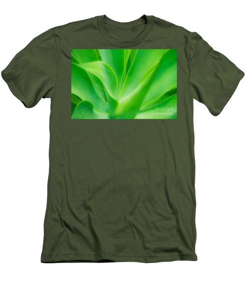 Dwarf Agave Men's T-Shirt (Slim Fit) by David Lawson