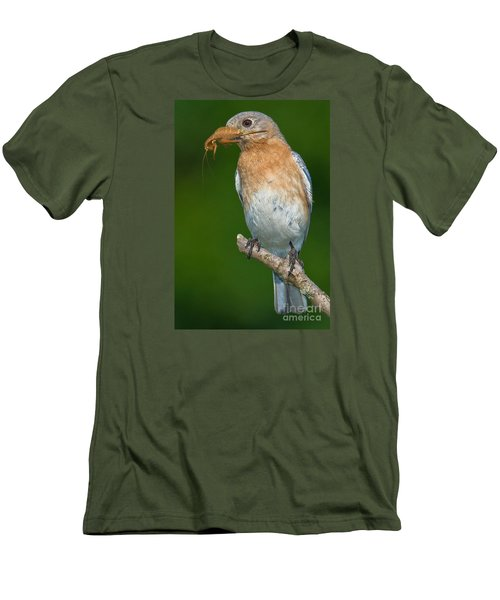 Men's T-Shirt (Slim Fit) featuring the photograph Eastern Bluebird With Katydid by Jerry Fornarotto