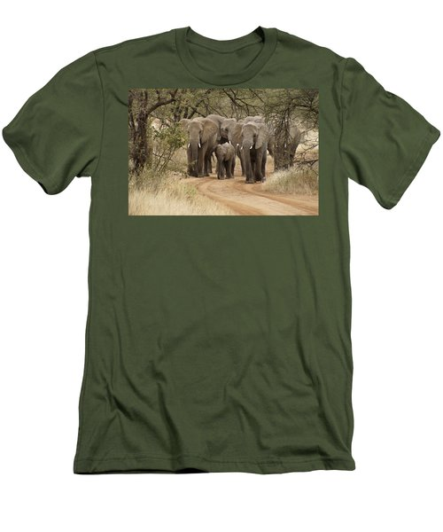 Elephants Have The Right Of Way Men's T-Shirt (Athletic Fit)