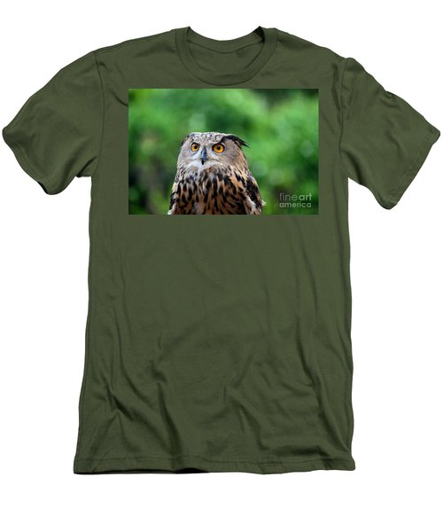 Eurasian Or European Eagle Owl Bubo Bubo Stares Intently Men's T-Shirt (Athletic Fit)