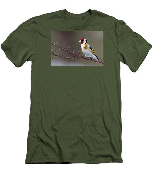 European Goldfinch  Men's T-Shirt (Slim Fit) by Torbjorn Swenelius