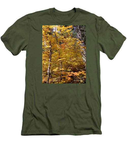 Fall Colors 6446 Men's T-Shirt (Athletic Fit)