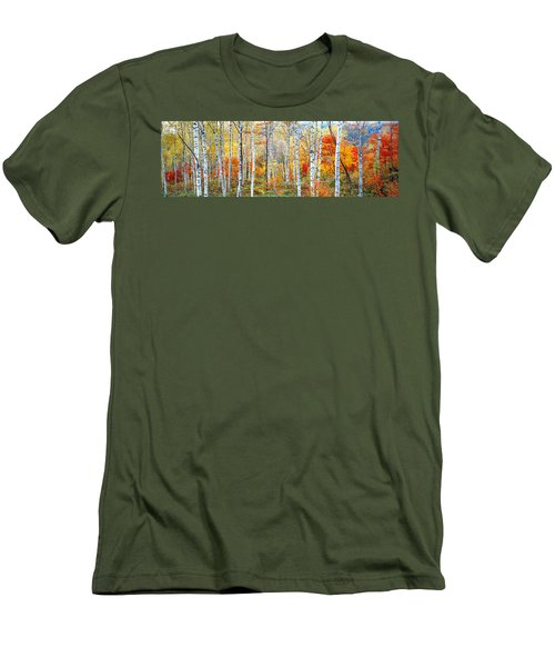 Fall Trees, Shinhodaka, Gifu, Japan Men's T-Shirt (Athletic Fit)