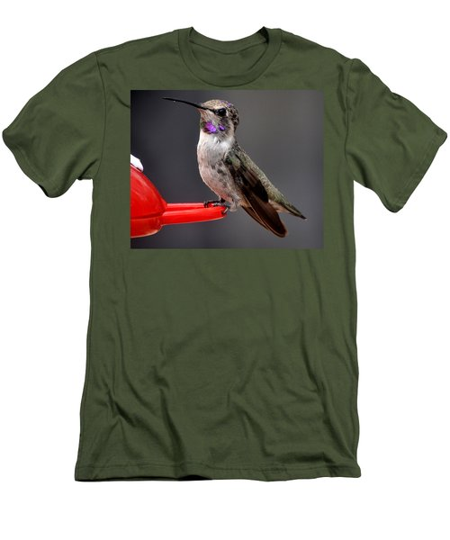 Men's T-Shirt (Slim Fit) featuring the photograph Female Anna's Hummingbird On Perch Posing For Her Supper by Jay Milo