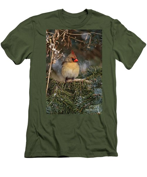 Female Norther Cardinal Men's T-Shirt (Athletic Fit)
