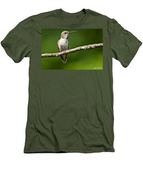 Female Rufous Hummingbird In A Tree Men's T-Shirt (Athletic Fit)