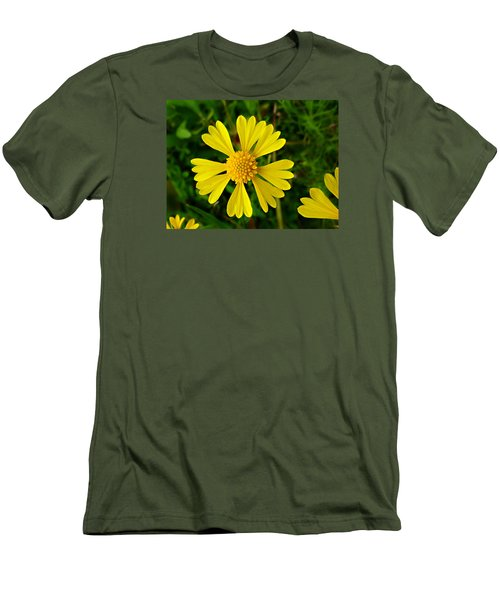 Wild Fine Leaved Sneezeweed Men's T-Shirt (Slim Fit) by William Tanneberger
