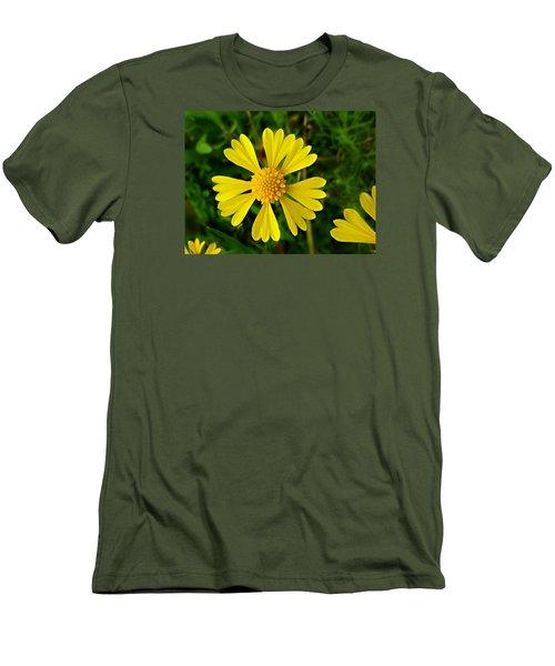 Wild Fine Leaved Sneezeweed Men's T-Shirt (Slim Fit)