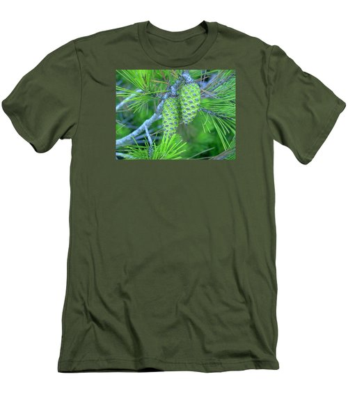 Fir Cones Men's T-Shirt (Athletic Fit)
