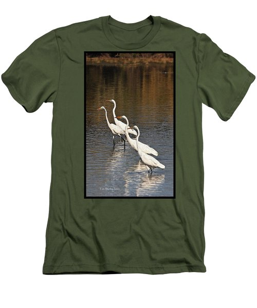 Men's T-Shirt (Slim Fit) featuring the photograph Four Egrets Fishing by Tom Janca