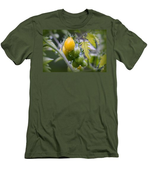 Fruits Of Our Labours Men's T-Shirt (Slim Fit) by Leone Lund