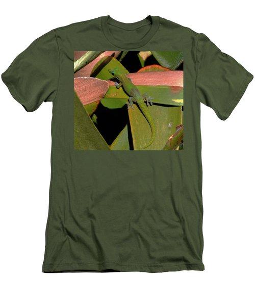 Gecko Men's T-Shirt (Slim Fit) by Pamela Walton