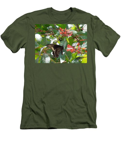 Men's T-Shirt (Slim Fit) featuring the photograph Gold Rim Swallowtail by Ron Davidson