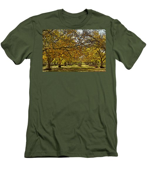 Golden Walnut Orchard Men's T-Shirt (Athletic Fit)