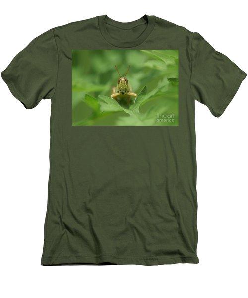 Men's T-Shirt (Slim Fit) featuring the photograph Grasshopper Portrait by Olga Hamilton