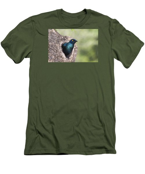 Greater Blue-eared Glossy-starling Men's T-Shirt (Slim Fit) by Andrew Schoeman