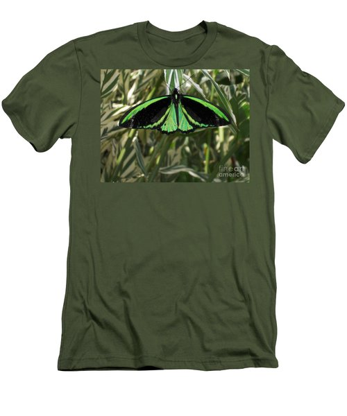 Men's T-Shirt (Slim Fit) featuring the photograph Green Butterfly by Brenda Brown