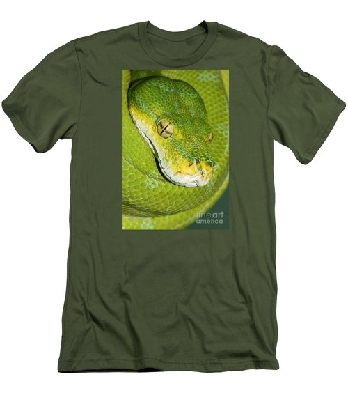 Men's T-Shirt (Slim Fit) featuring the photograph Green Tree Python #2 by Judy Whitton