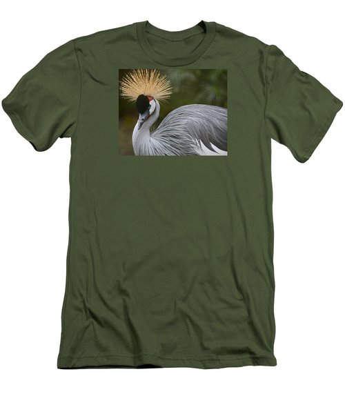 Grey Crowned Crane Men's T-Shirt (Slim Fit) by Venetia Featherstone-Witty