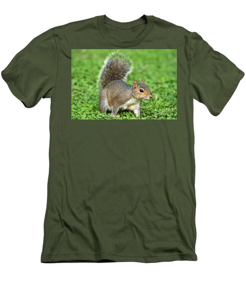 Men's T-Shirt (Slim Fit) featuring the photograph Grey Squirrel by Antonio Scarpi