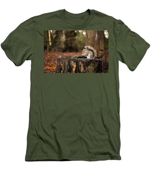 Grey Squirrel On A Stump Men's T-Shirt (Slim Fit) by Spikey Mouse Photography