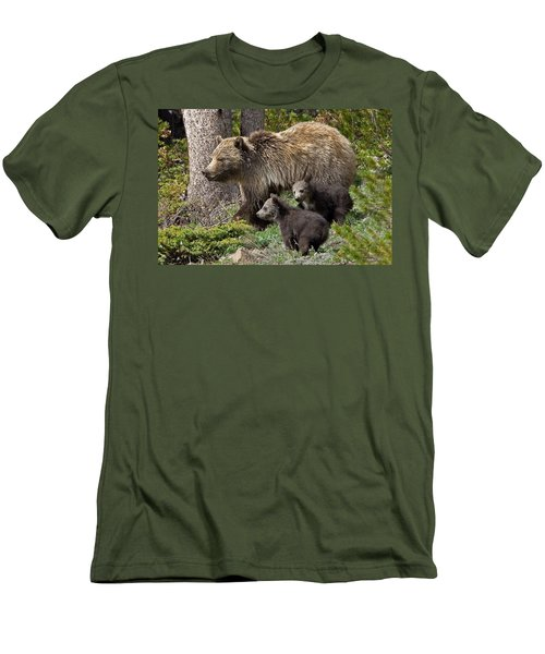 Grizzly Bear With Cubs Men's T-Shirt (Slim Fit) by Jack Bell