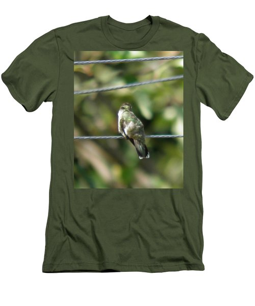 Men's T-Shirt (Slim Fit) featuring the photograph Grooming Hummer by Nick Kirby