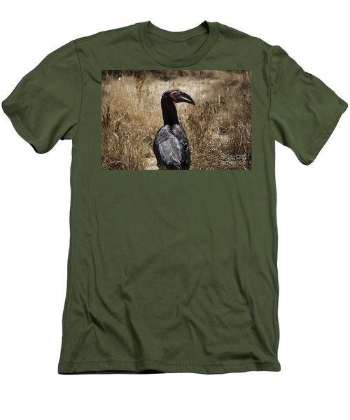 Ground Hornbill-africa Men's T-Shirt (Athletic Fit)
