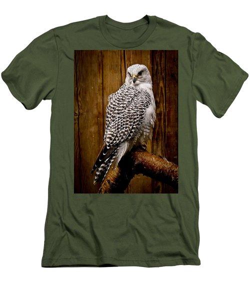 Gyrfalcon Perched Men's T-Shirt (Slim Fit) by Steve McKinzie