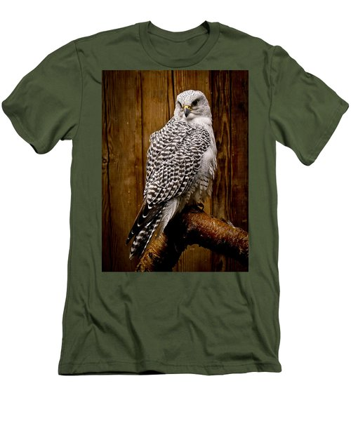 Gyrfalcon Perched Men's T-Shirt (Athletic Fit)