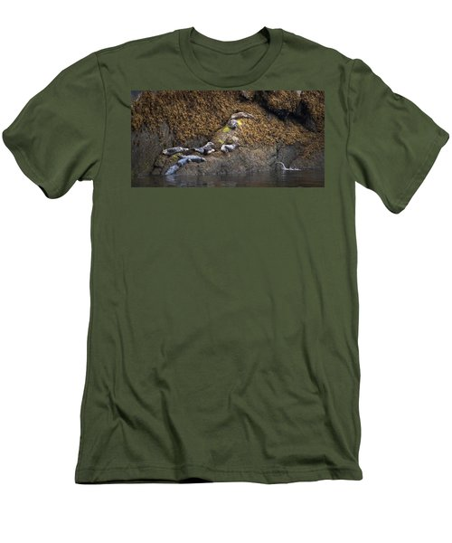 Harbor Seals Men's T-Shirt (Athletic Fit)