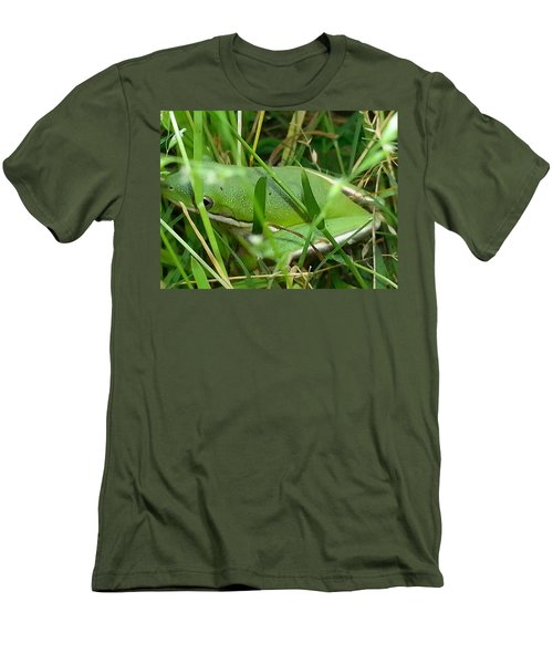 Hidden Frog Men's T-Shirt (Slim Fit)