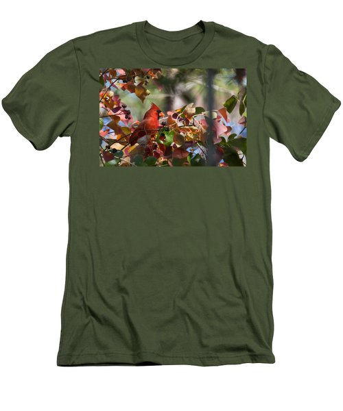 Hiding Away Men's T-Shirt (Slim Fit) by Linda Unger