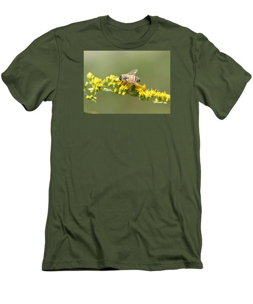 Honeybee On Goldenrod Twig Men's T-Shirt (Slim Fit) by Lucinda VanVleck