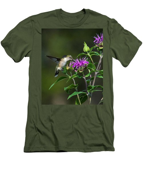Hummer On Bee Balm Men's T-Shirt (Athletic Fit)