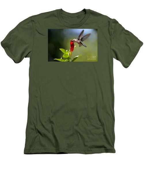 Hummingbird Dipping Men's T-Shirt (Athletic Fit)